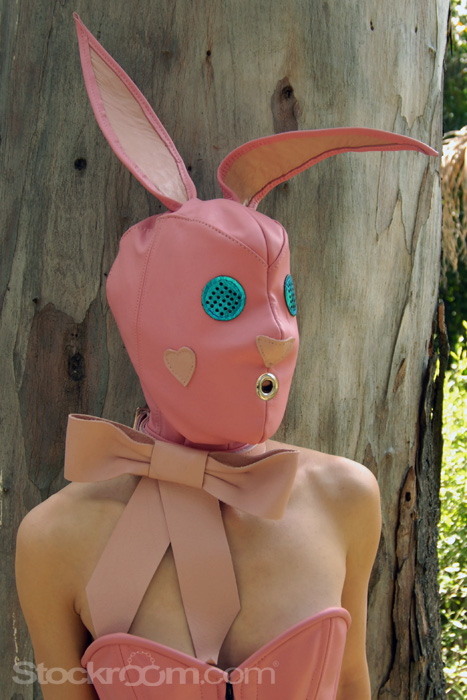Pink Bunny Hood Front