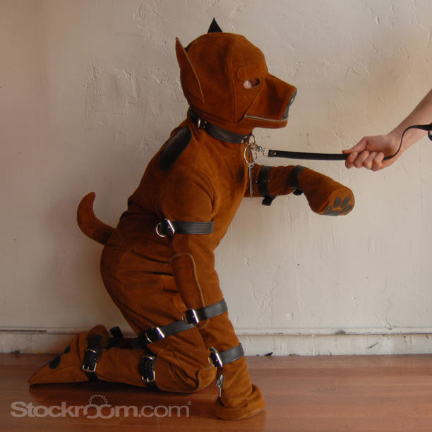 Stockroom Puppy Suit 04