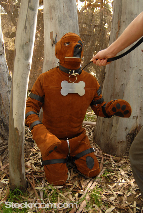 Stockroom Puppy Suit 08